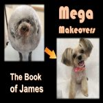 <b>Mega Makeover: Hunched Back</b>